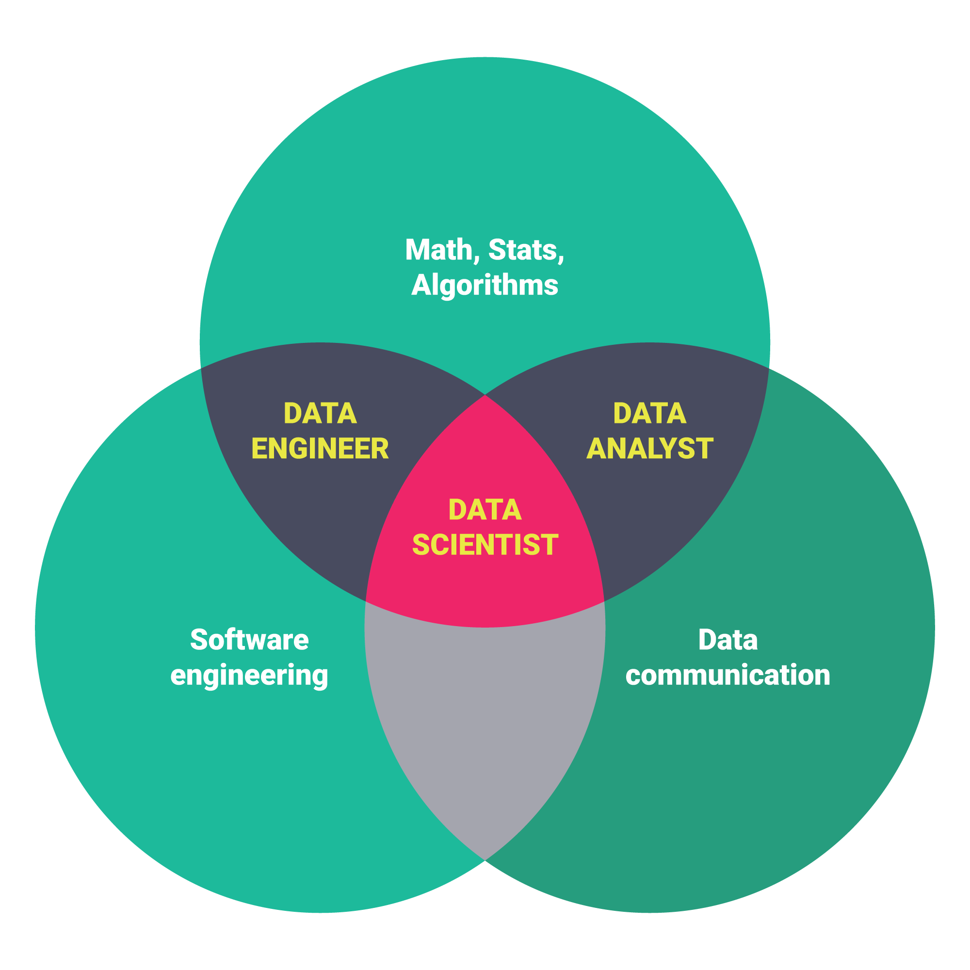 data science career paths  different roles in the industry